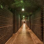 와인 저장소